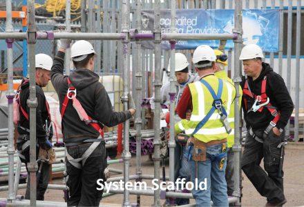 Cuplok-System-Scaffold